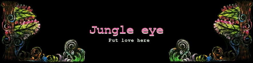 �����˥å��ϥե��å���󡦥������󥷥�åע���JUNGLE  EYE��������󥰥륢�����������Ρ�