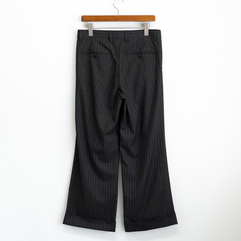 ts(s) * 2 In-Pleat Wide Pants * Stripe
