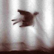 M. OSTERMEIER / Tiny Birds (CD)
