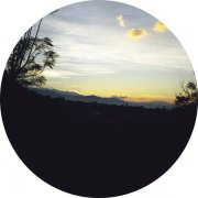 TOM RECCHION / Oaxaca Dawn / Bamboo (LP - Picture Disc)