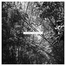 ANDREW PEKLER / Tristes Tropiques (LP)