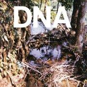 DNA / A Taste Of DNA (12 inch)