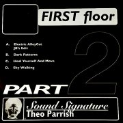THEO PARRISH / First Floor (Part 2) (Vinyl 2LP)