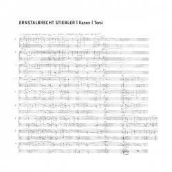 ERNSTALBRECHT STIEBLER / Kanon / Torsi (LP)