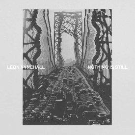 LEON VYNEHALL / Nothing Is Still (LP/LP Box)