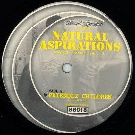 THEO PARRISH / Natural Aspirations (Vinyl Vers. Pt.1) (12inch)