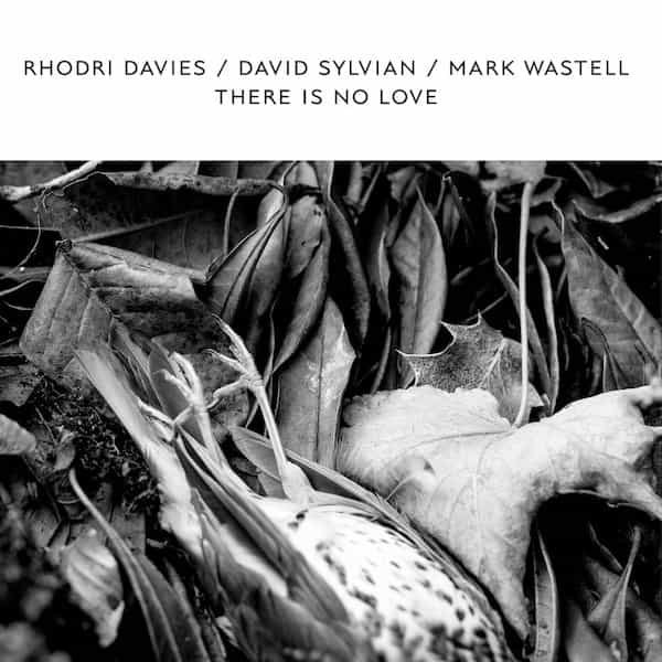 RHODRI DAVIES / DAVID SYLVIAN / MARK WASTELL / There Is No Love (Vinyl LP)