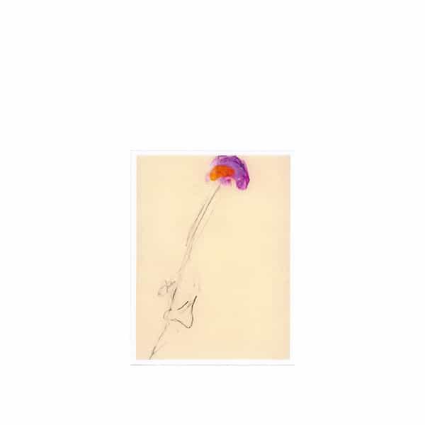 LOREN MAZZACANE CONNORS / Unaccompanied Acoustic Guitar Improvisations Vol. 10 (LP)