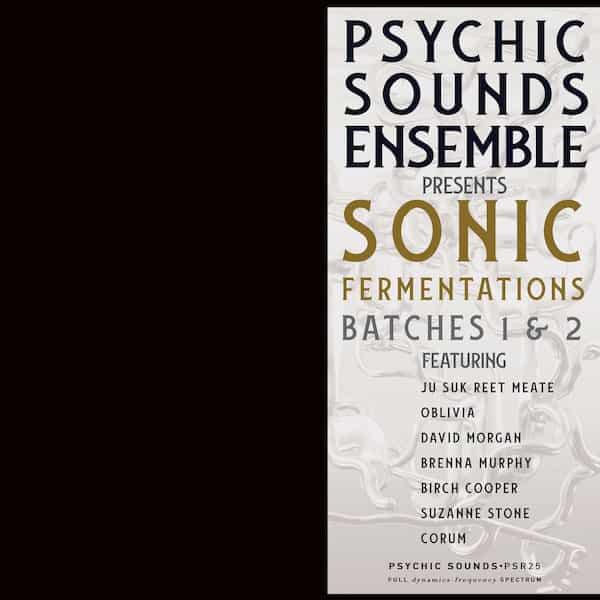 PSYCHIC SOUNDS ENSEMBLE / Sonic Fermentations (LP) - thumbnail
