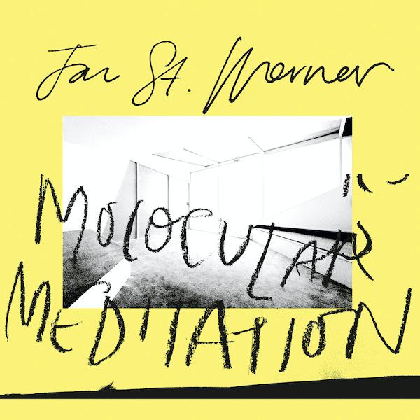 JAN ST. WERNER / Molocular Meditation (LP)