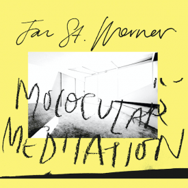 JAN ST. WERNER / Molocular Meditation (LP)