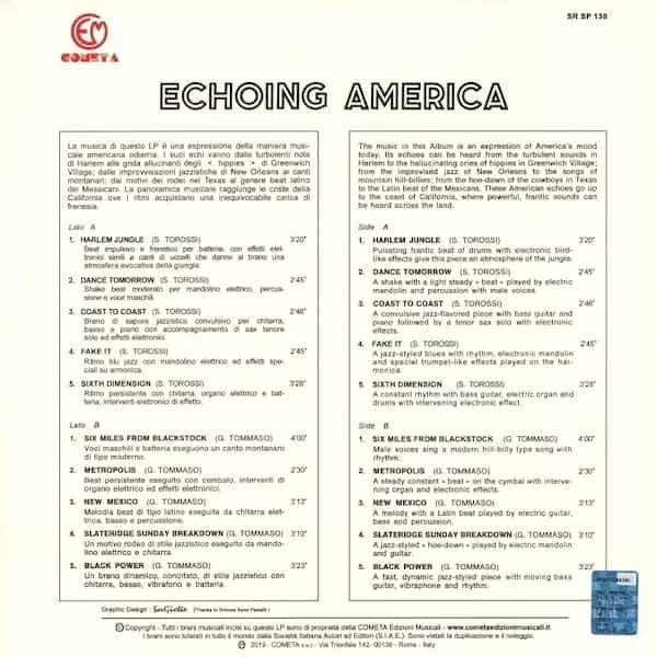 STEFANO TOROSSI, GIOVANNI TOMMASO / Echoing America (LP) - thumbnail