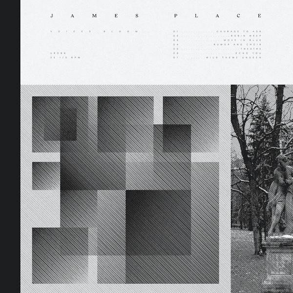 JAMES PLACE / Voices Bloom (LP+DL)