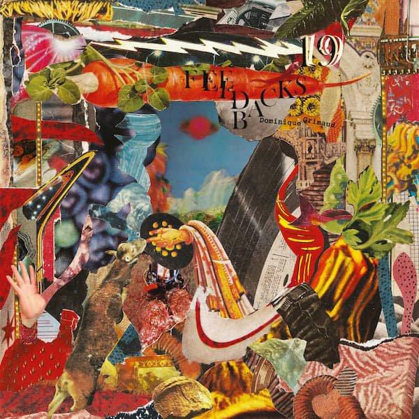 DOMINIQUE GRIMAUD / 19 Feedbacks (LP)