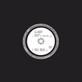 MUSLIMGAUZE / Anders Peterson Reworks Muslimgauze Two (12 inch)