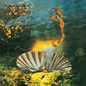 ROBERTO LANERI / Anadyomene (LP) - sleeve image
