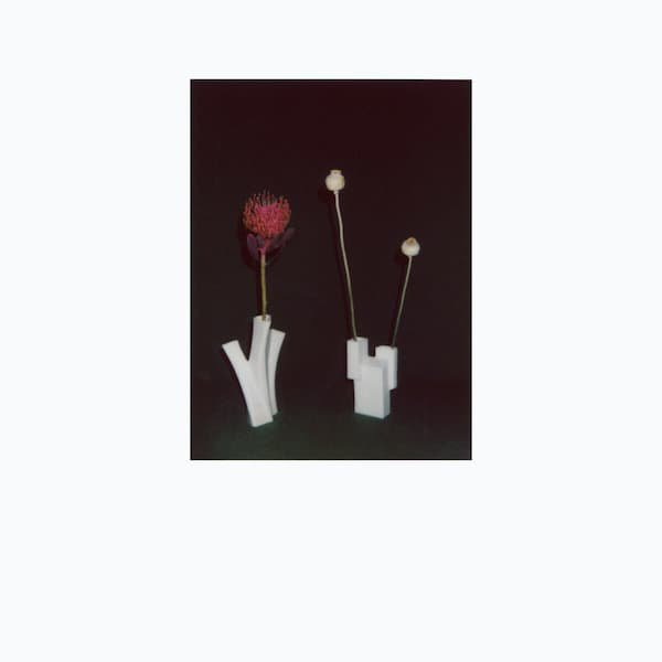 FELICIA ATKINSON / The Flower And The Vessel (CD/2LP)