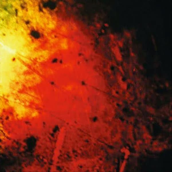 ANN MARGARET HOGAN / Funeral Cargo (LP Clear Vinyl)