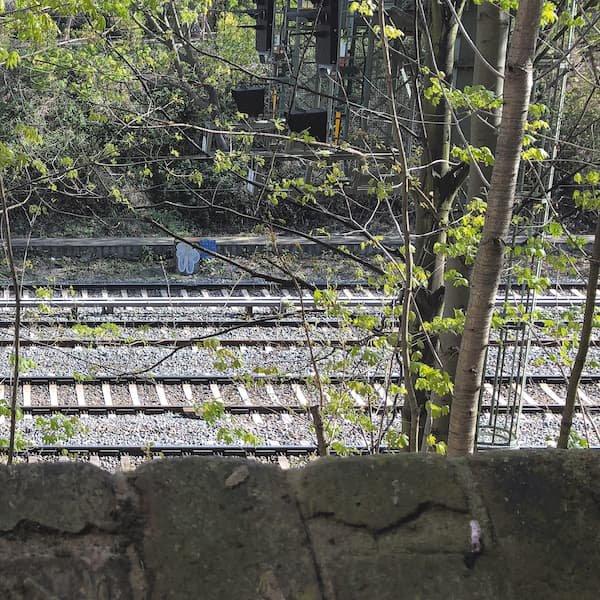 LUCY RAILTON / 5 S-Bahn (LP Blue Vinyl)