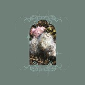BEN BONDY / Glans Intercum (LP)