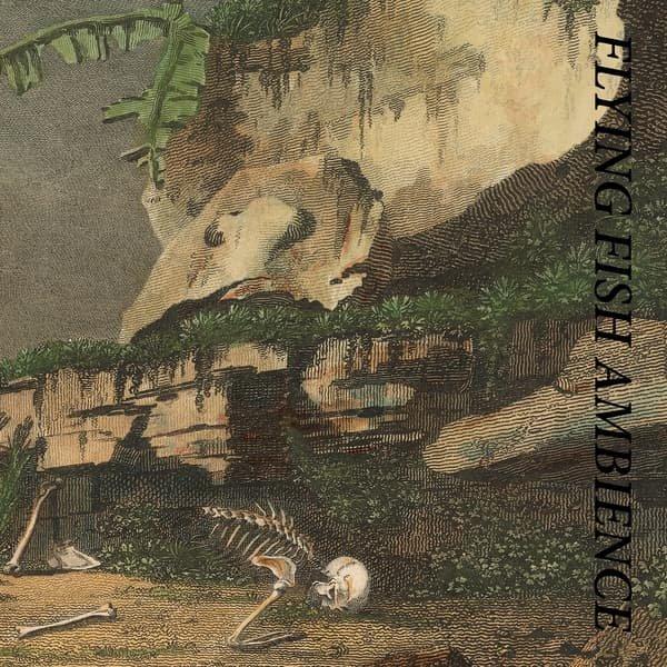 RAINFOREST SPIRITUAL ENSLAVEMENT / Flying Fish Ambience (2LP Splatter Vinyl)