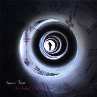 SIMON FINN / Accidental Life (CD国内盤仕様)
