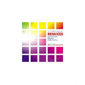 HU VIBRATIONAL / Remixes (12 inch)