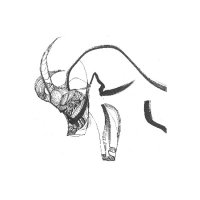 MIKA VAINIO | KOUHEI MATSUNAGA / Split LP (12 inch)