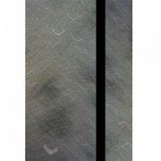 PETERLICKER / Last Slave (Cassette)