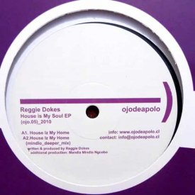 REGGIE DOKES / House Is My Soul EP (12inch)