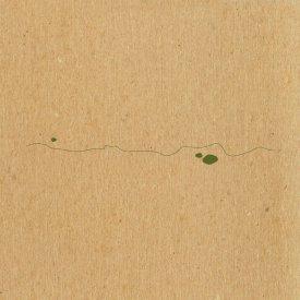 TAYLOR DEUPREE / Shoals (Edition) (7 inch)