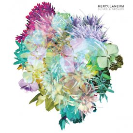 HERCULANEUM / Olives & Orchids (LP+DL)