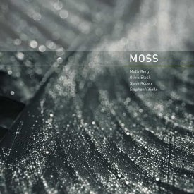 MOLLY BERG, OLIVIA BLOCK, STEVE RODEN, STEPHEN VITIELLO / Moss (CD)