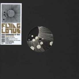 FLYING LOTUS / Cosmogramma Alt Takes (LP)