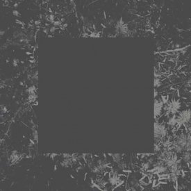 HOUSE OF LOW CULTURE / Poisoned Soil (CD)