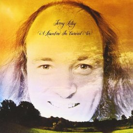 TERRY RILEY / A Rainbow In Curved Air - 50 year anniversary edition (LP)