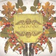 AMANDINE / Solace In Sore Hands (CD)