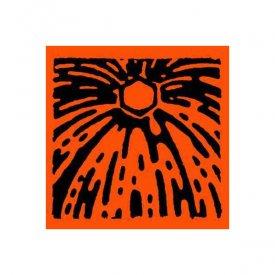 TOUCH 33 / Islands Inbetween (LP)