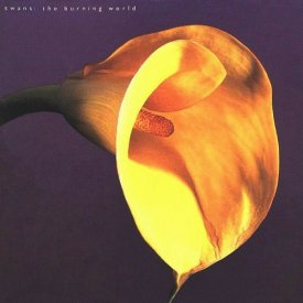 SWANS / The Burning World (CD)