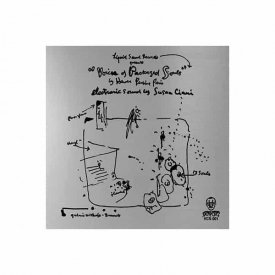 SUZANNE CIANI / Voices Of Packaged Souls (LP)