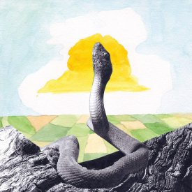 WOODS / Bend Beyond (CD)