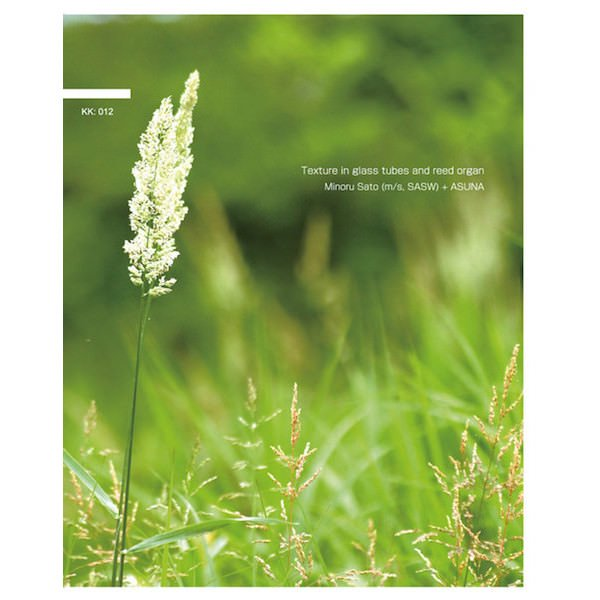MINORU SATO (m/s, SASW) + ASUNA / Texture In Glass Tubes And Reed Organ (CD) - sleeve image