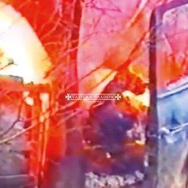 VATICAN SHADOW / Ornamented Walls (LP)