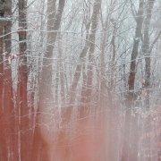 SEAWORTHY + TAYLOR DEUPREE / Wood, Winter, Hollow (CD)