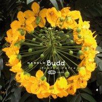 HAROLD BUDD / Avalon Sutra (2CD)