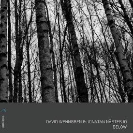 DAVID WENNGREN & JONATAN NASTESJO / Below (CD)