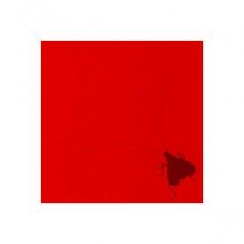 灰野敬二 (KEIJI HAINO)、藤枝守、GREAT YEar SOUNDINGS / Homeogryllus Japonicus Orchestra 2004 (CD)