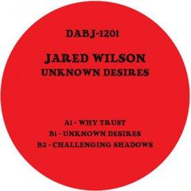 JARED WILSON / Unknown Desires (12 inch)