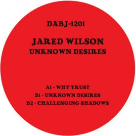 JARED WILSON / Unknown Desires (12 inch)