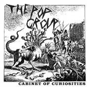 THE POP GROUP / Cabinet Of Curiosities (CD)